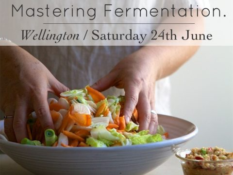 Fermentation Wellington 2017